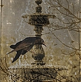Gothic Fountain by Suzanne Powers