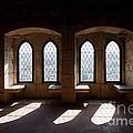 Gothic Windows Of The Royal Residence In The Leiria Castle by Jose Elias - Sofia Pereira