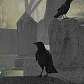 Gothic Winter Blackbirds by Gothicrow Images