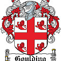 Goulding Coat Of Arms Irish by Heraldry