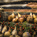 Gourds by Debra and Dave Vanderlaan