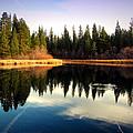Grace Lake Northern California by Joyce Dickens