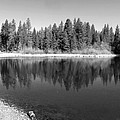 Grace Lake Reflections In Black And White by Joyce Dickens