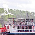 Graceful Ghost Steamboat by Donna Wilson