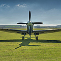 Graceful Spitfire Hdr by Gary Eason