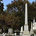 Graceland Chicago - The Cemetery Of Architects by Christine Till