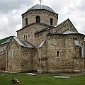Gradac Monastery by Zoran Berdjan
