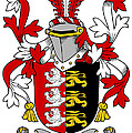 Grady Coat Of Arms Irish by Heraldry