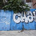Graffiti-0579 by David Lange
