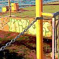 Graffiti Dock by Anne Cameron Cutri