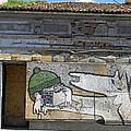 Graffiti In Veliko Tarnovo  by Tony Murtagh
