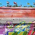 Graffiti With Flags by Anne Cameron Cutri
