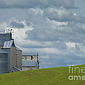 Grain Elevator by John Shaw