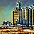 Grain Elevators by Randy Harris