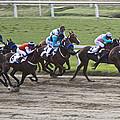 Gran Premio Nacional Horse Racing In Buenos Aries by Venetia Featherstone-Witty