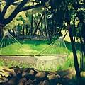 Granbury Hammock by Linda Scott
