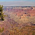 Grand Canyon 30 by Douglas Barnett
