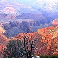 Grand Canyon 67 by Will Borden