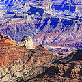 Grand Canyon And The Colorado River by James Steele