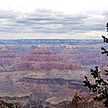 Grand Canyon Awaiting Snowstorm by Laurel Powell