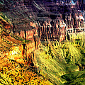 Grand Canyon Hermit Road Viewpoint  by Bob and Nadine Johnston