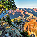 Grand Canyon Ledge by Christopher Arndt