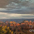 Grand Canyon North Rim Sunset by Sandra Bronstein