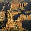 Grand Canyon North Rim by Tom Vezo
