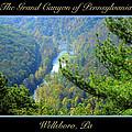 Grand Canyon Of Pennsylvania Wellsboro by A Gurmankin