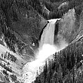 Grand Canyon Of The Yellowstone  by Christiane Schulze Art And Photography