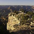 Grand Canyon Outlook by Peter Lloyd