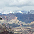 Grand Canyon Shadows And Snow by Laurel Powell