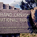 Grand Canyon Signage by Thomas Woolworth