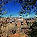 Grand Canyon - South Rim 1  by Susan McMenamin