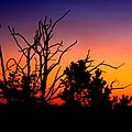 Grand Canyon Sunset by Aidan Moran