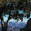 Grand Canyon View 2 by Natural Focal Point Photography