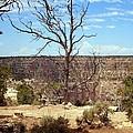 Grand Canyon View 6 by Philomena Zito