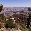 Grand Canyon View B by John Johnson