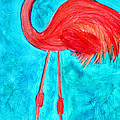 Grand Flamingo by Maura Satchell