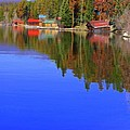 Grand Lake Spring II by Jacqueline Russell