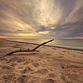 Grand Mere Sunset - Driftwood by Jackie Novak