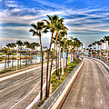 Grand Prix Of Long Beach by Heidi Smith