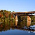 Grand River Autumn Freight Train by Barbara McMahon