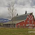 Grand Scenic Farm by Kelly Black