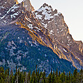 Grand Teton From Jenny Lake by Adam Pender