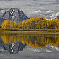 Grand Teton Gold by Wes and Dotty Weber