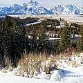 Grand Teton Landscape by Adam Jewell