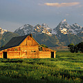 Grand Teton National Park , Wyhomestead by Ted Wood