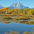 Grand Teton National Park 3 by Jacklyn Duryea Fraizer