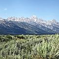 Grand Teton National Park by Sophie Vigneault